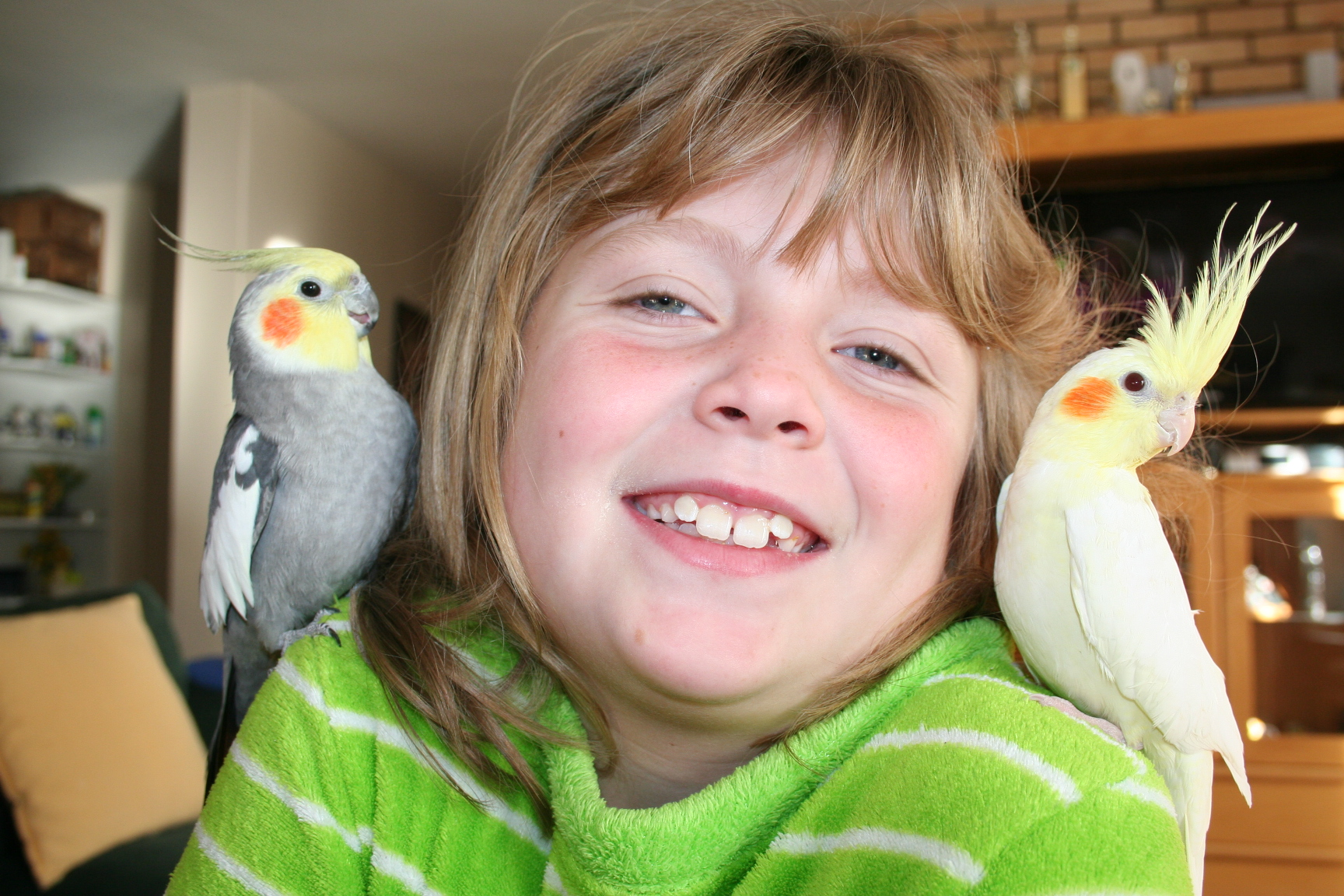 are parrots good pets for children