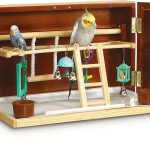 cockatiel playground