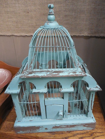 bird cage floors