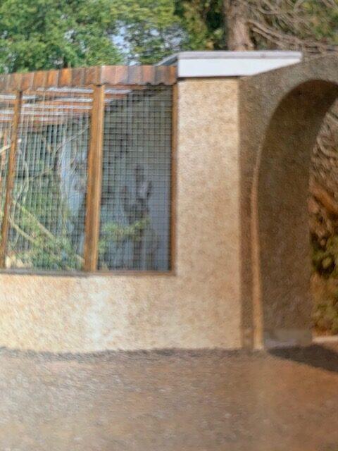 build your own bird aviary